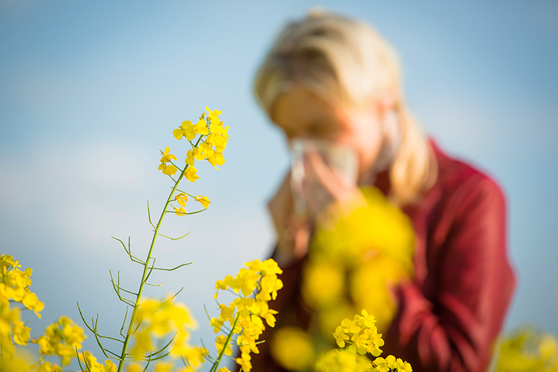 6 foods to avoid for allergy season